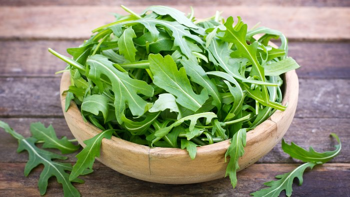 Польза рукколы для организма. Рецепты салатов с рукколой