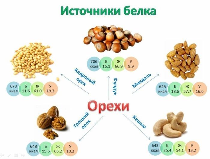 Белок в продуктах питания. Таблица, список белковых продуктов для похудения, роста мышц, при беременности