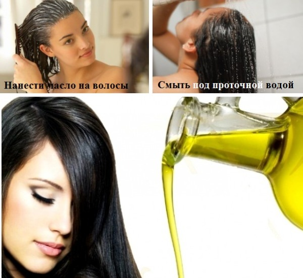 Оливки и маслины в чем разница. Польза и вред для организма косточки, зеленых и черных маслин и оливок, свежих и консервированных