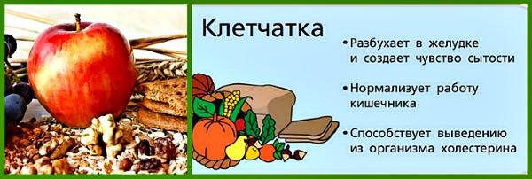 В каких продуктах содержится клетчатка: растительная, грубая. Список продуктов, таблица. Польза и вред, как принимать для похудения