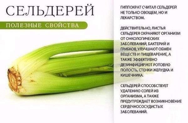 Суп для похудения из сельдерея. Рецепты с фото из стеблей, вкусный от Аллы Будницкой, с луком, капустой, болгарским перцем, помидорами