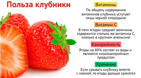 Таблица калорийности продуктов и готовых блюд, самая полная, подробная на 100 грамм. Меню питания для похудения