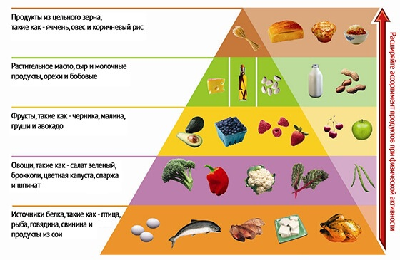Диета Аткинса: белковая, революционная, низкоуглеводная, модифицированная. Меню, таблица продуктов, рецепты на каждый день