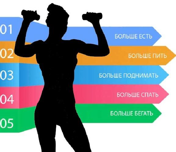 Как ускорить обмен веществ в организме, нормализовать для похудения. Продукты, травы, таблетки, витамины