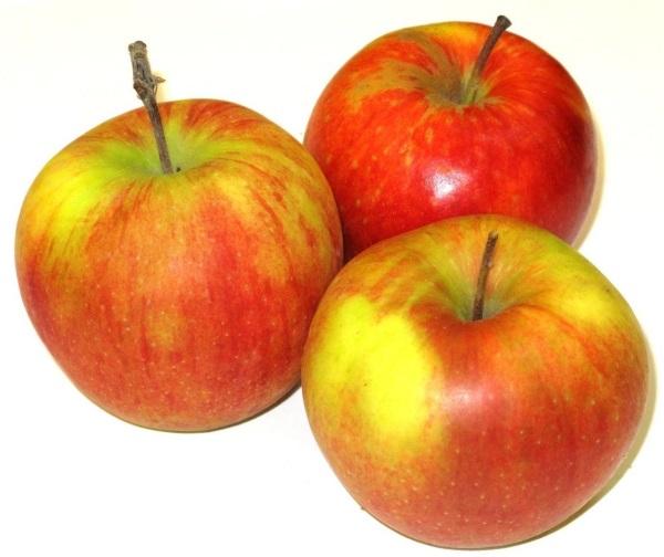 Калорийность яблока на 100 грамм зеленого, красного, сушеного, запеченных: Голден, Антоновка, Гала, Гренни смит, Семеренко