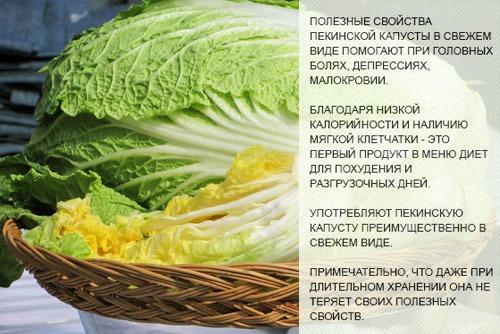 Совместимость продуктов для правильного питания. Таблица Шелдона, список для потолстения, похудения, при занятии спортом. Меню на месяц с рецептами