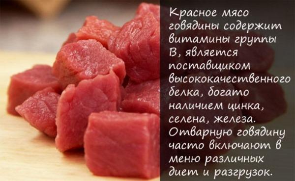 Котлеты из фарша говядины. Рецепт, как приготовить пошагово с фото