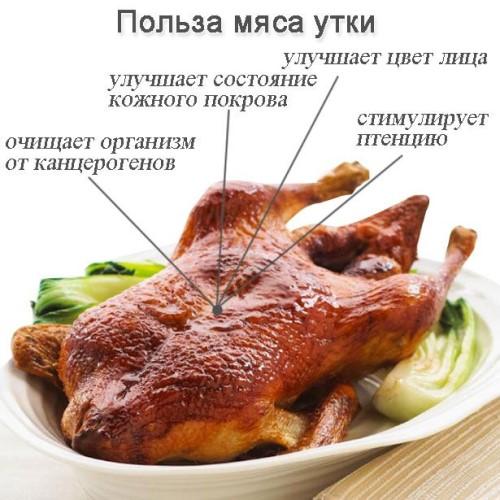 Как замариновать утку для запекания в духовке в рукаве. Рецепты пошагово с фото