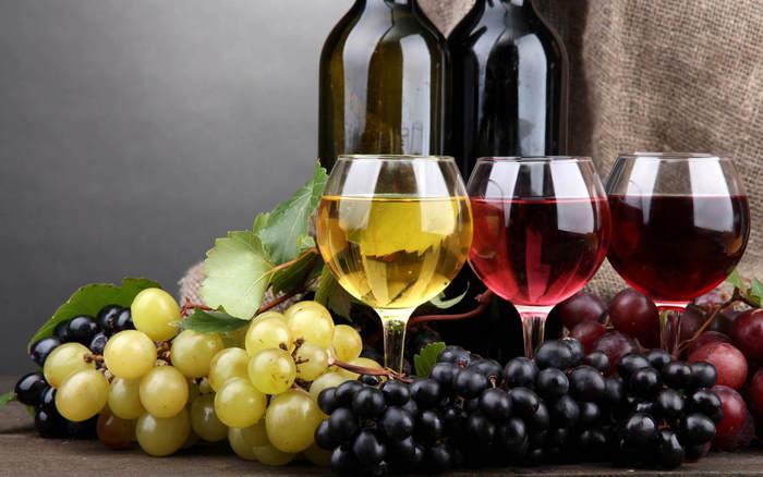 Биодинамическое вино - что это такое, состав, отличия от биологического, органического. Крымские, России, европейские