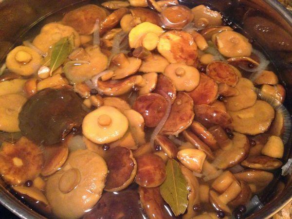 Маринованные грибы на зиму. Рецепты простые и вкусные, без стерилизации