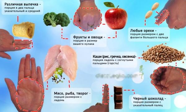 Пищевая пирамида питания здорового, правильного для похудения, с помощью руки