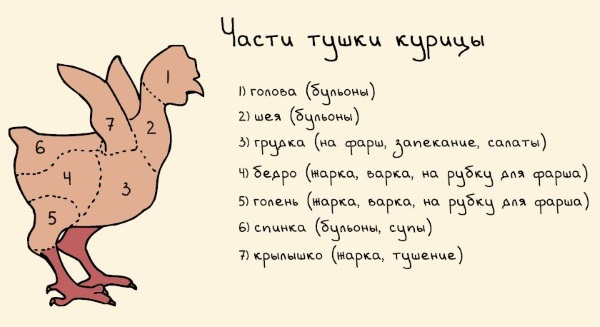 Бульон куриный. Калорийность, белки, жиры, углеводы с вермишелью, лапшой, яйцом из грудки, целой курицы, бедра