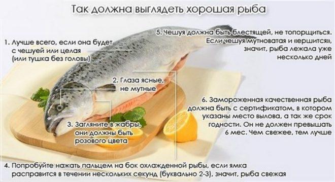 Минтай жареный. Калорийность на 100 грамм, белки, жиры, углеводы