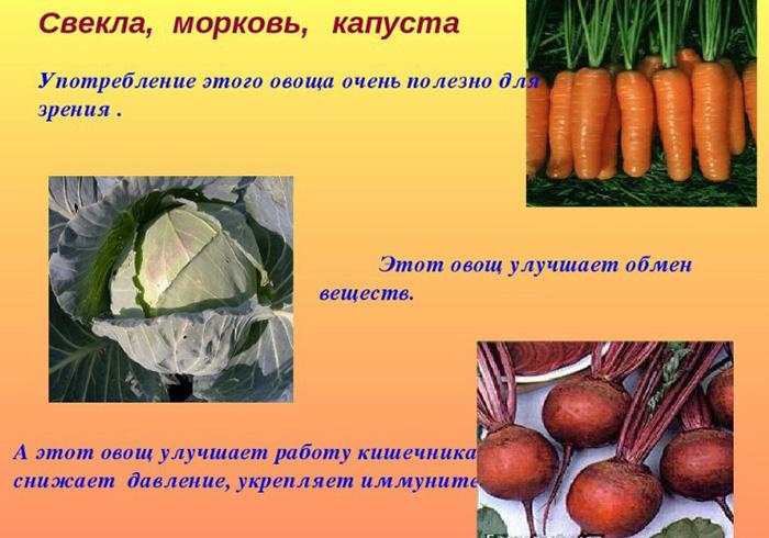 Салат Метелка для похудения. Рецепты для очищения кишечника, фото до и после, калорийность. Как приготовить