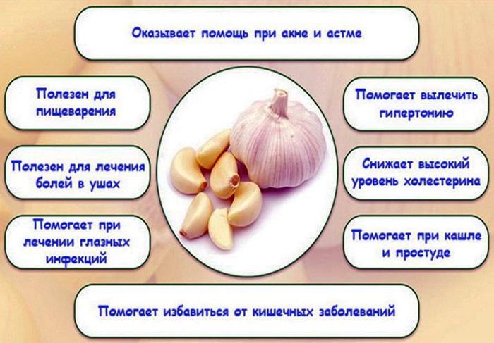 Борщ со свининой. Калорийность, бжу. Рецепт пошаговый со свежей, квашеной капустой и без, чесноком, уксусом