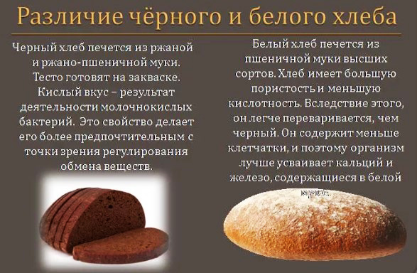 Бутерброд с маслом и сыром. Калорийность 1 шт на 100 грамм, белки, жиры, углеводы