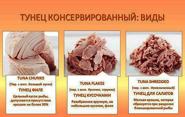 Белковые салаты для похудения. Рецепты из простых продуктов с калорийностью