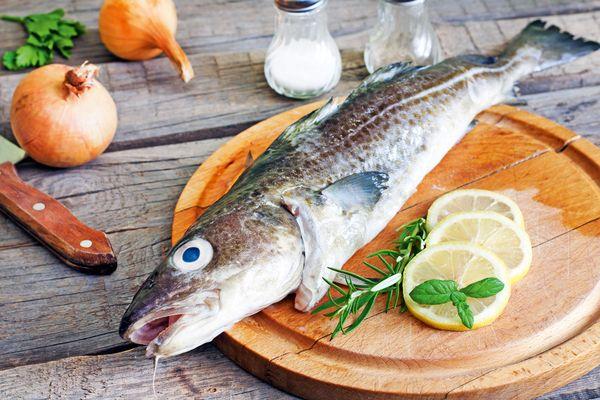 Морская рыба. Список для еды, фото и название, полезные свойства, калорийность