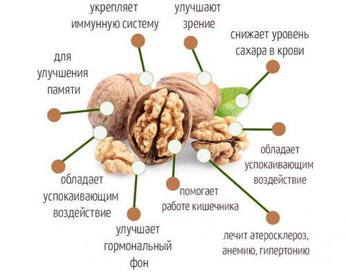 Грецкие орехи. Вес без скорлупы 1 шт, в стакане, со скорлупой. Калорийность, БЖУ