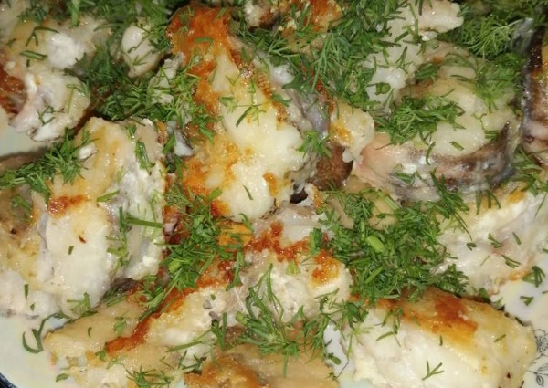 Рыба конгрио. Польза и вред, свойства, калорийность, бжу, рецепты